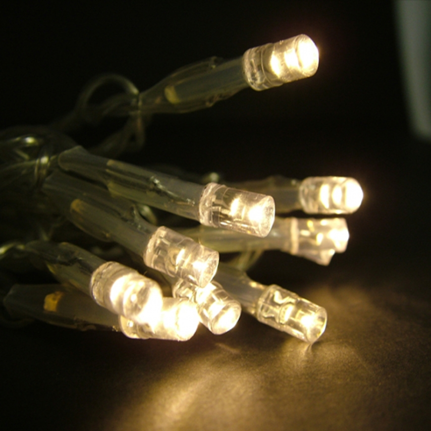 String Lights Name : AA battery operated led string light(Warm White)-5MM Concave Led string lights-Floralyte ...